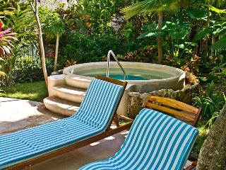Riviera Maya Suites 2 Bedroom apartment with garden view. Free Wifi. - Playa del Carmen vacation rentals