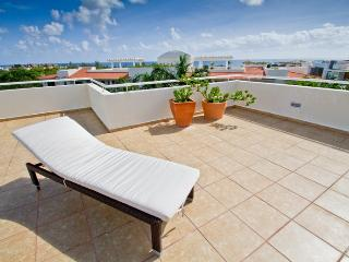 Palmar del Sol 305. Penthouse 2 bedrooms.5th Avenue view.On downtown - Playa del Carmen vacation rentals