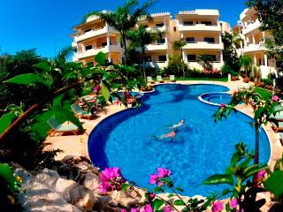 Palmar del Sol 204. 3 Bedroom apartment.Garden and 5th View. - Playa del Carmen vacation rentals
