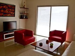 Palmar del Sol 301. Penthouse 3 Bedroom.5th Avenue View.Downtown,Free wifi. - Playa del Carmen vacation rentals