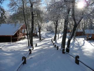 Ski Chile! - Ski Cabin Nº1 - Chillan vacation rentals