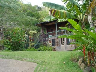 Green Lodge on Organic Farm across from Pipeline - Haleiwa vacation rentals