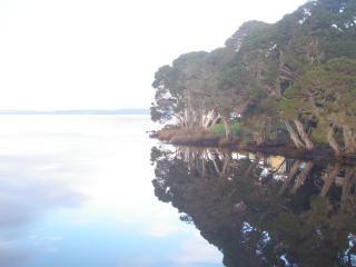 Letts Inn Letts Bay Strahan Tasmania - Strahan vacation rentals