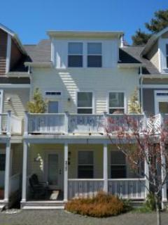 Ocean Peek 3 BR all w/Private Baths, Hot Tub, King - Image 1 - Oregon Coast - rentals