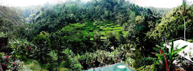 Panoramic view - Tirta Asri, Sacred spring and Magical retreat - Ubud - rentals