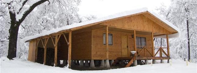 Ski Chile! - Ski Cabin Nº3 - Colorado vacation rentals