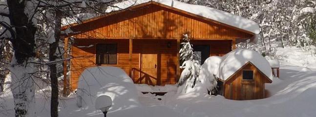 Ski Chile! - Ski Cabin Nº7 - Colorado vacation rentals