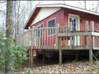 Wrap around deck has a lake a forest view - Glenview - Rhinelander - rentals