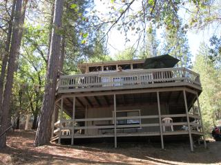 The Cedar Cabin at Pine Mountain Lake - Groveland vacation rentals