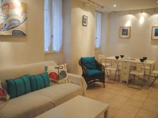 Le Suquet 2 Bedroom Apartment, in Center of the Old Town of Cannes - La Palud sur Verdon vacation rentals