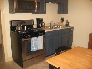 Charming House with Internet Access and Garden - Gettysburg vacation rentals