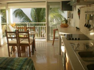 Perfect Apartment with Television and A/C - Marigot vacation rentals