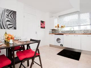 Stylish apartment - Best deal in north london - London vacation rentals