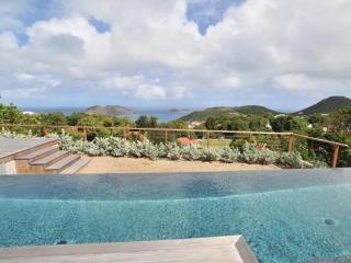 Contemporary villa with view over the ocean & Bonhomme Island WV CAS2 - Colombier vacation rentals