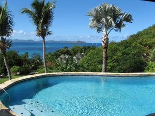 Virgin Gorda BVI villa 4 bdrm 4 bath with pool - Virgin Gorda vacation rentals