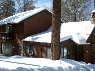 Rustic 90yr Old Cabin/Quiet/HDTV/Hot Tub/Netflix - Fawnskin vacation rentals
