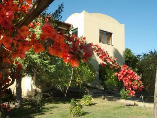 Villa Batiuska - Capri vacation rentals