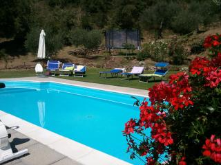 Villa Near Cortona with Two Apartments Ideal for Families - Casa Lola - Montecchio vacation rentals