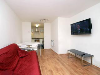 STRATFORD OLYMPIC FLAT 2bed1bath with Terrace next to Westfield - London vacation rentals