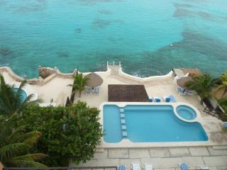 Cozumel Penthouse Condo in Private Oceanfront - Cozumel vacation rentals