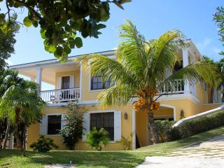 Spacious 4 bedroom Harbour Island House with Internet Access - Harbour Island vacation rentals