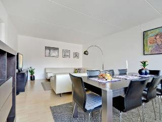 Beautiful Copenhagen apartment near Faelledparken - Copenhagen vacation rentals