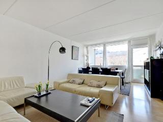Beautiful Copenhagen apartment near Faelledparken - Copenhagen vacation rentals