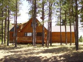 mountain vacation home - Angel Fire vacation rentals