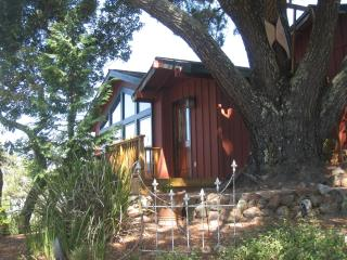 Nice Condo with Deck and Internet Access - Novato vacation rentals