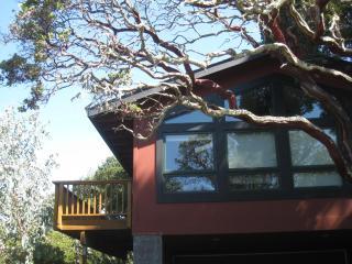 Nice Condo with Deck and Internet Access - Novato vacation rentals