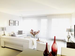 SERVICED & STYLED TWO BEDROOM APARTMENT - Zurich vacation rentals