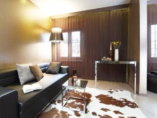 Charming 1 bedroom Condo in Zurich - Zurich vacation rentals