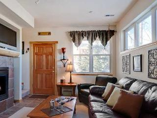 HS9082B Fantastic Condo w/Fireplace, Garage, Wifi, Pet Friendly - Silverthorne vacation rentals