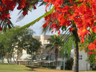 Great Deal! Deluxe Beach & Golf Villa - Vega Baja vacation rentals