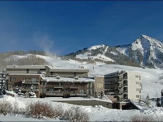 Beautiful Slopeside Accommodations - Perfect for a Romantic Getaway (1150) - Crested Butte vacation rentals