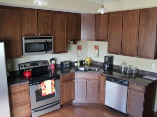 Luxurious Downtown Condo 1 Block off Main Street! - Southwest Colorado vacation rentals