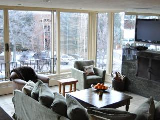 Durant 101B - Ski In/Out Panoramic  Mountain Views through floor to ceiling glass windows - Aspen vacation rentals