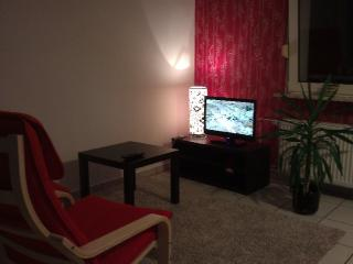 Vacation Apartment in Duisburg - 614 sqft, warm, comfortable, friendly (# 3046) - Duisburg vacation rentals