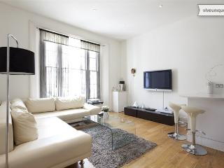 Notting Hill ground floor 2 bed apartment, Notting Hill - London vacation rentals