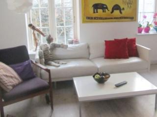 Cozy Copenhagen apartment with terrace at Vesterport - Copenhagen vacation rentals