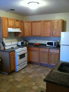 Nice Condo with Internet Access and Alarm Clock - Silver City vacation rentals