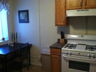 Nice Condo with Internet Access and A/C - Silver City vacation rentals