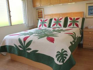 Oceanview 200 Steps from Beach Snorkeling/Swimming - Kihei vacation rentals