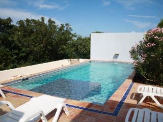 Comfortable 3 bedroom Anguilla Villa with Deck - Anguilla vacation rentals
