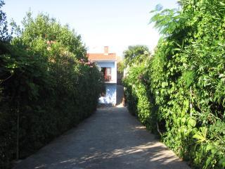 Zadar apt in lux villa with pool& garden near sea - Zadar vacation rentals