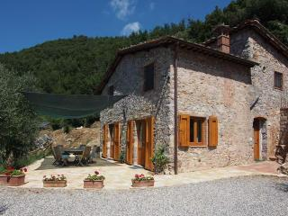 2 Farmhouses 5 bedrooms in Countryside near Lucca with Pool - Valdottavo vacation rentals