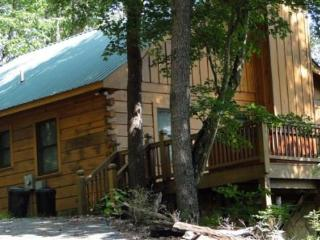 Holly Hollow - charming pet friendly vacation cabin offering great value and fantastic views - Blue Ridge vacation rentals