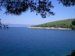 Luxe Waterfront House - Villa Rosemarine - Cove Puntinak (Selca) vacation rentals