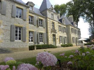 Chateau de Planchevienne - Burgundy vacation rentals