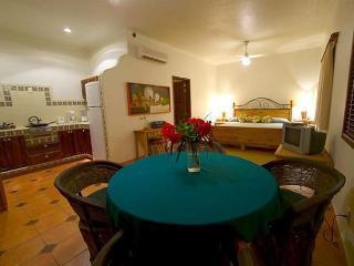 Casa Manana V- Luxury Studio Apartment - Bucerias vacation rentals